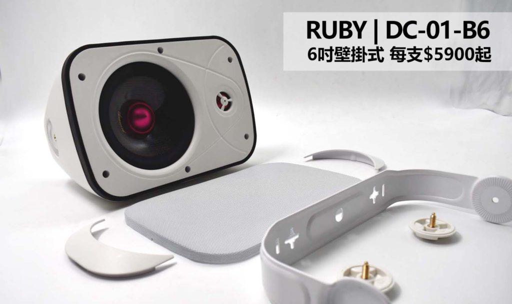 6吋壁掛式喇叭-DC-01-B6-IPX66防水喇叭-重低音喇叭-分類
